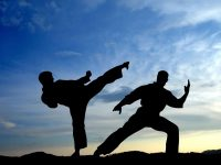 Pilsung ATA Martial Arts offers FREE private introductory class