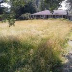 Lawn care is a walk in the park with Hoosier Lawn Maintenance